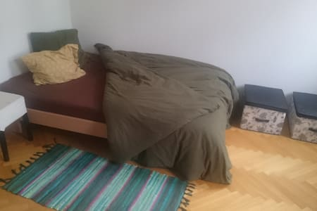 Cosy Room in the city center. - Wien