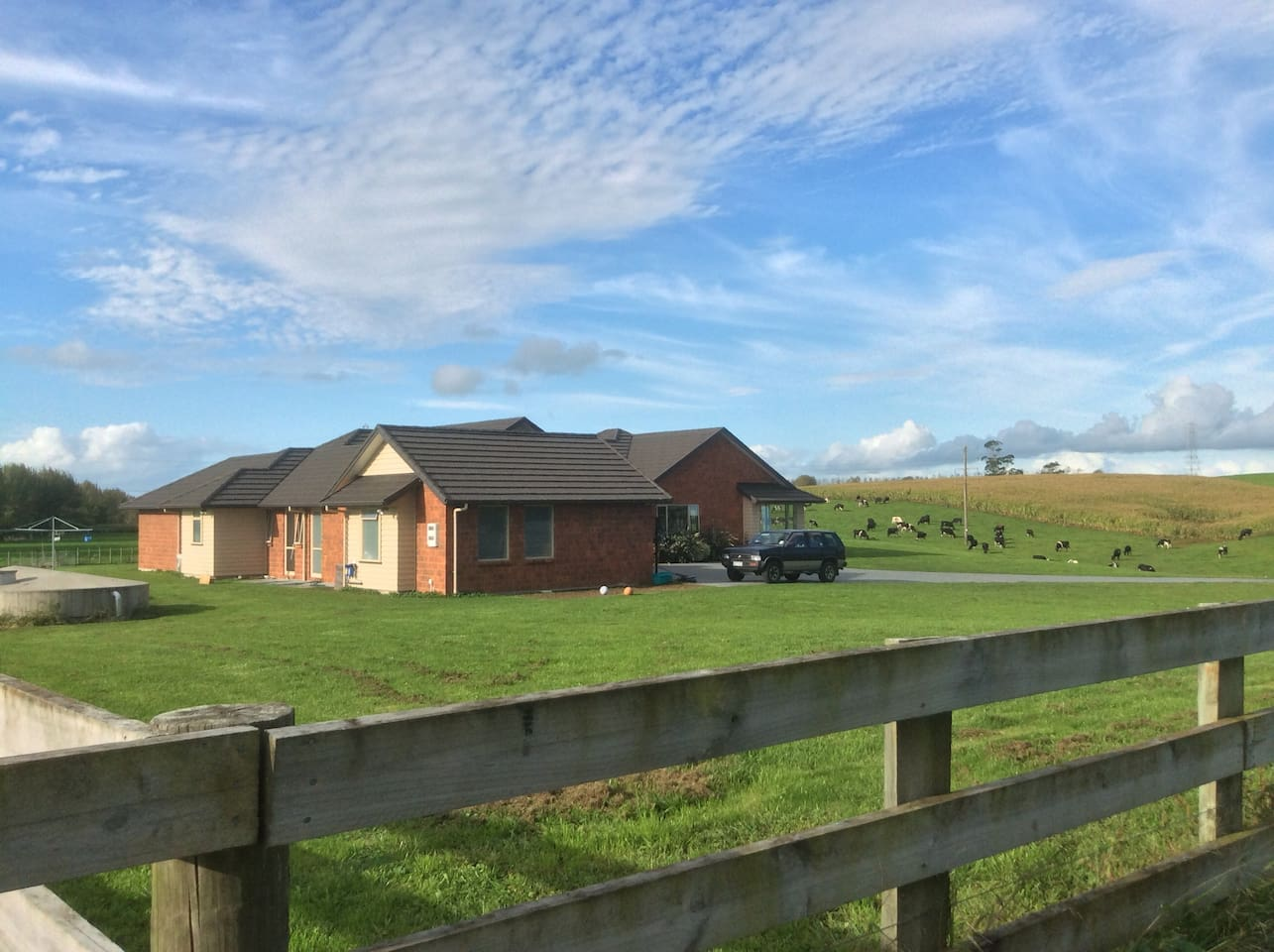 Our spacious sunny home on the city boundary but nestled in the countryside.