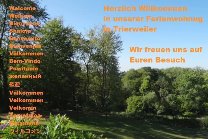 Ferienwohnung in Trierweiler/ Sauna/Bikers Welcome