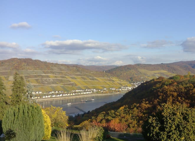 Schau-Rhein - on Top of Bacharach with Rhineview