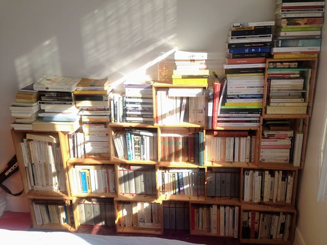 An apartment full of light and books