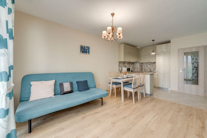 Bright and Newly Refurbished Apartment near Center