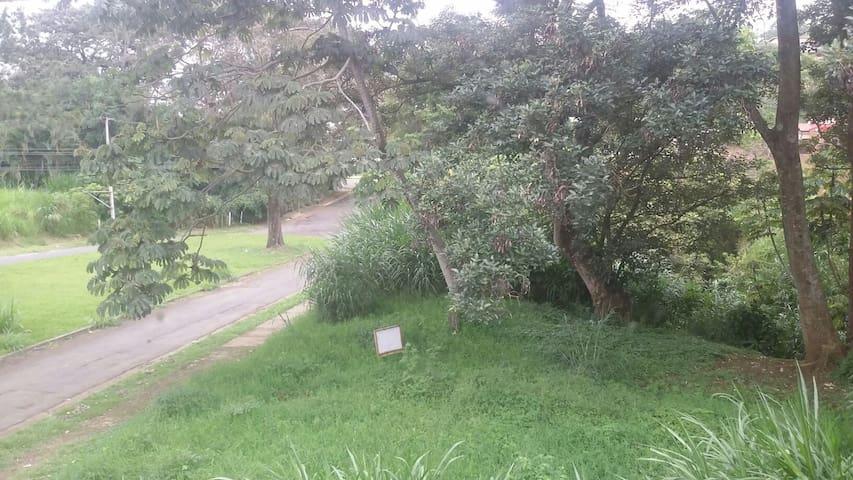 Habitación con hermosa vista verde - San José - Daire