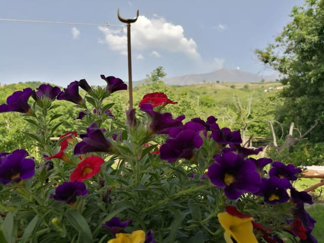 """Relax alle pendici dell'Etna """"Open Space"""""""