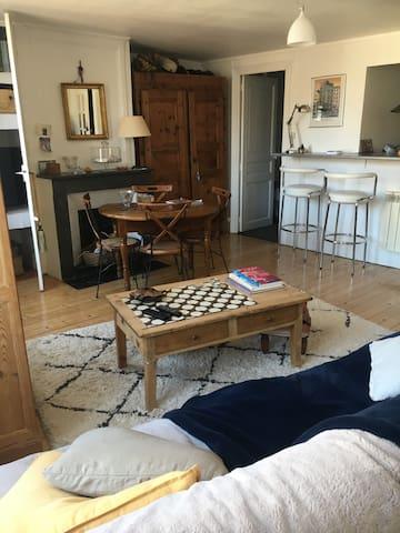 Appartement cocoon au cœur de Mâcon