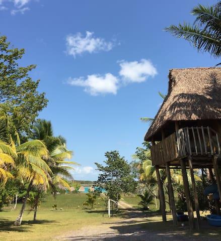Cabaña 03 Panto-ha - Bacalar, Quintana Roo, MX - Blockhütte