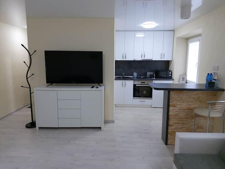 Modern one room apartment near the city center