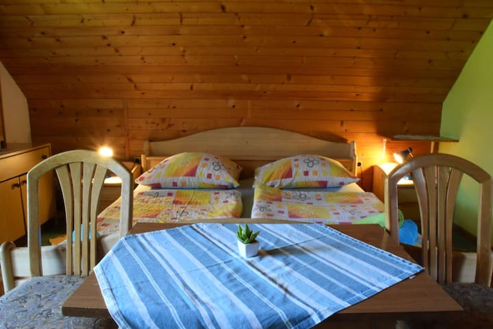 Apartment for 6 in the hearth of Bohinj