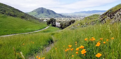 Bluerock Retreat-Outdoor livng 1.5 mi. to dtwn SLO