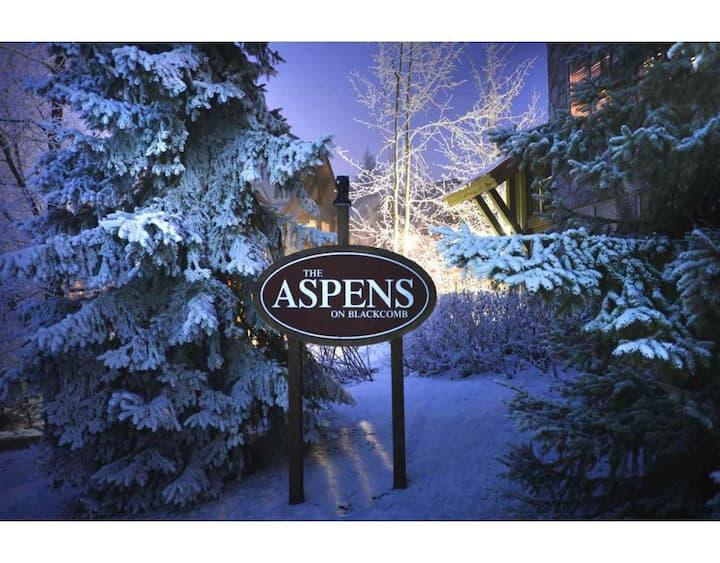 John's Aspens Ski In/Out Condo