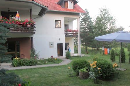 Apartmants Bojana - Čajetina