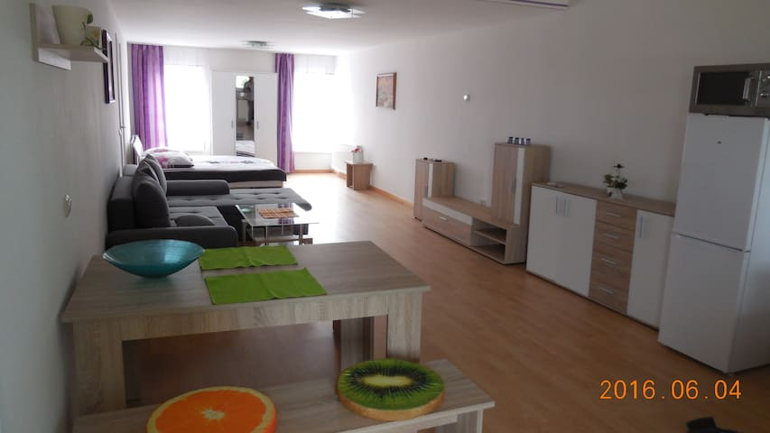 Apartment close to Uni Hospital/Chio/SnowWorld