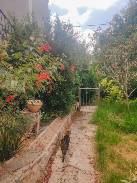 Quiet Kibbutz Apartment