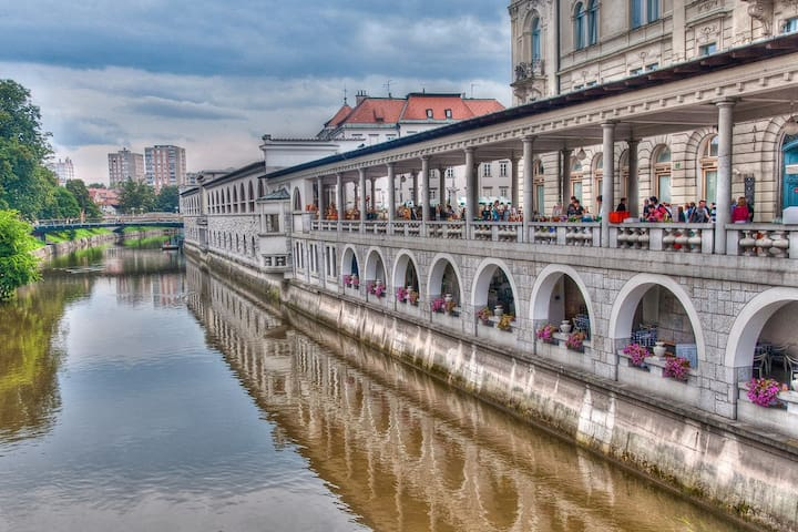 Ljubljana city center river bank comfy apartment. - Ljubljana - Appartement