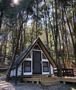 三角屋-山中寂靜。 森林裡的靜謐空間