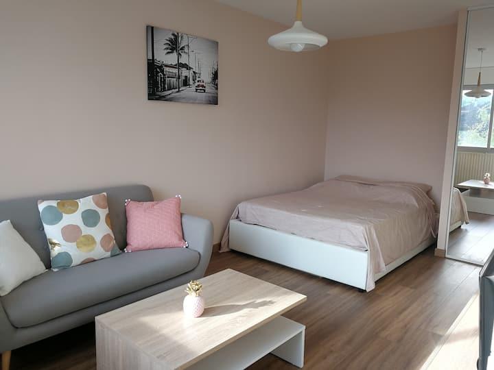 Charmant appartement entièrement rénové