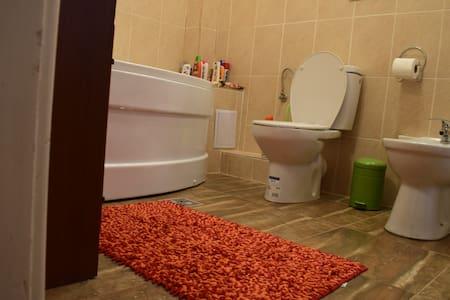 Transilvania Apartment - Târgu Mureș