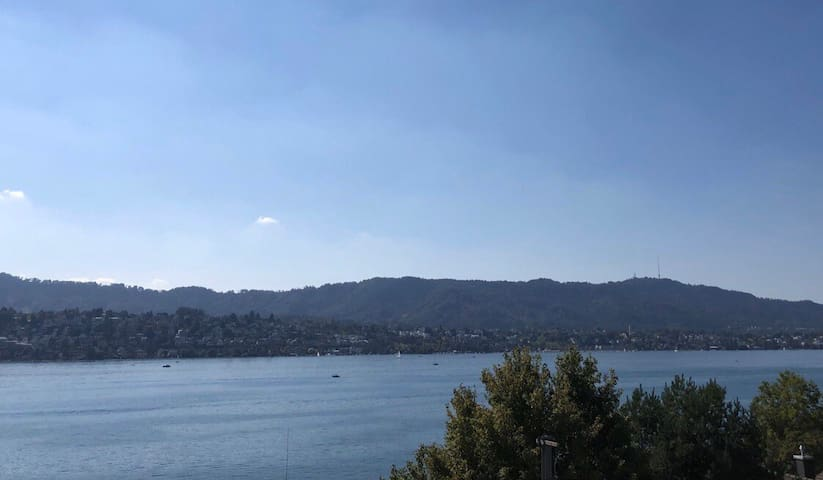 Furnished apartment in Zollikon with lake view