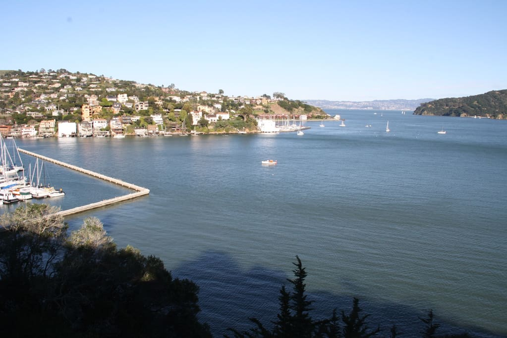 Partial view from the house and small back deck. It can't all be captured in a single photo! We are just past the San Francisco Yacht Club (left). Across is Tiburon, Angel Island and to the right is the Bay Bridge. Seals hunt fish in the shallow waters while kids practice their sailing. On Fridays the bay is filled with racing sailboats.