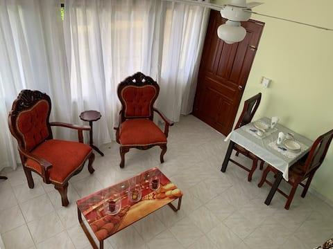 Ideal Apartament #3