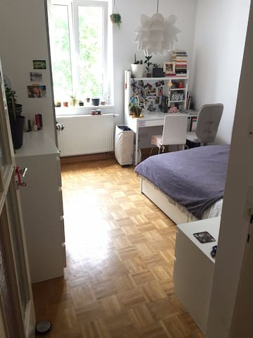 Room in Würzburg - in the best location possible!