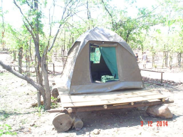 Warthogs Safari Camp Tent 1