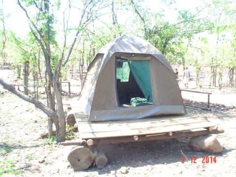 "Warthogs Safari Camp ""Compact"" Tent 1"