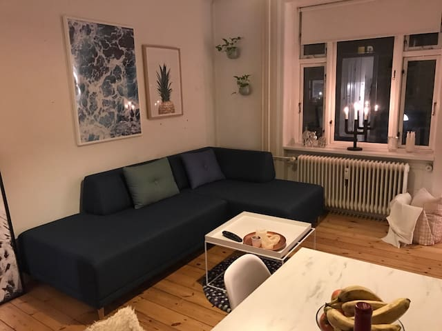 Cozy apartment, perfectly located - københavn V