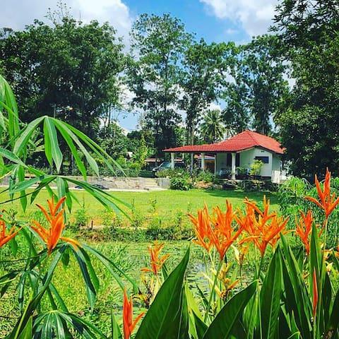 Idyllic retreat in Laman Si Nani, Lenggeng. - Lenggeng