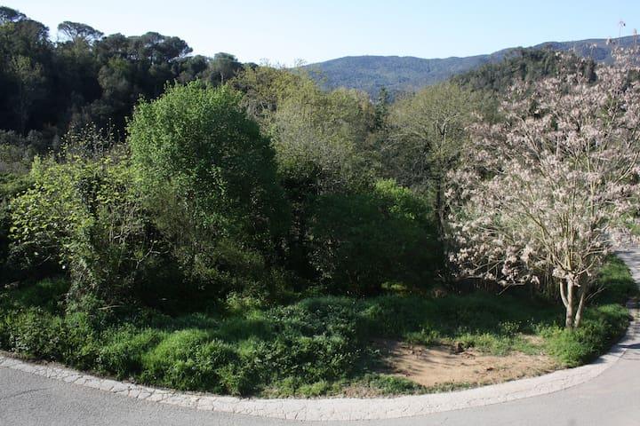 Masía en Parque Natural Montnegre i Corredor - Vallgorguina - Rumah