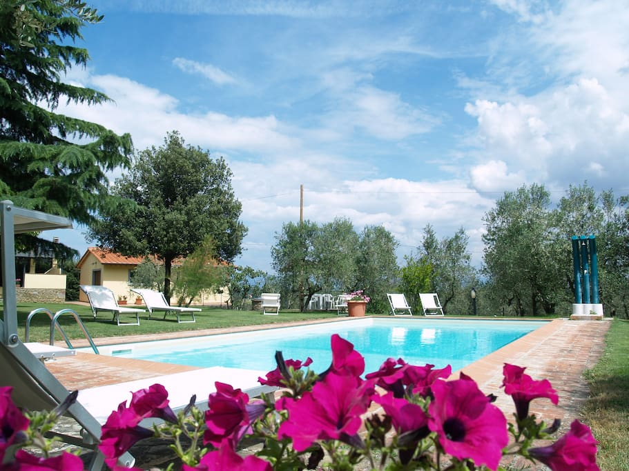 Panoramic apartment in Tuscany near Siena and Florence: swimming pool