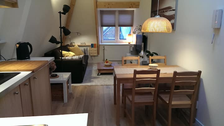 Cozy studio in centre of historical Haarlem
