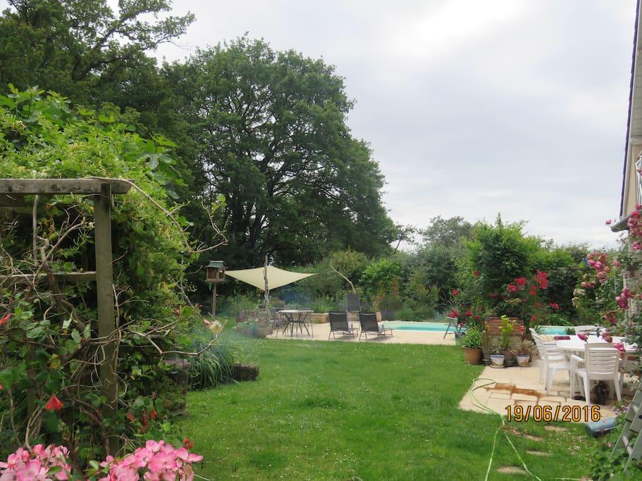 Une autre vue du jardin