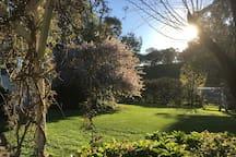 'Tara' garden