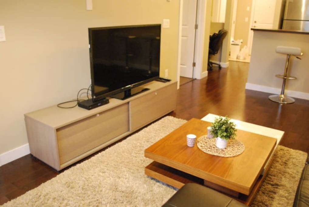 Modern furniture with large TV with cable