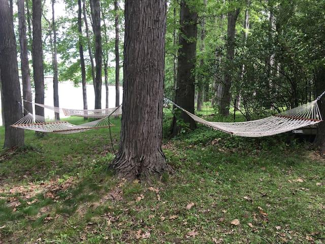 Hammock haven: 3 hammocks!