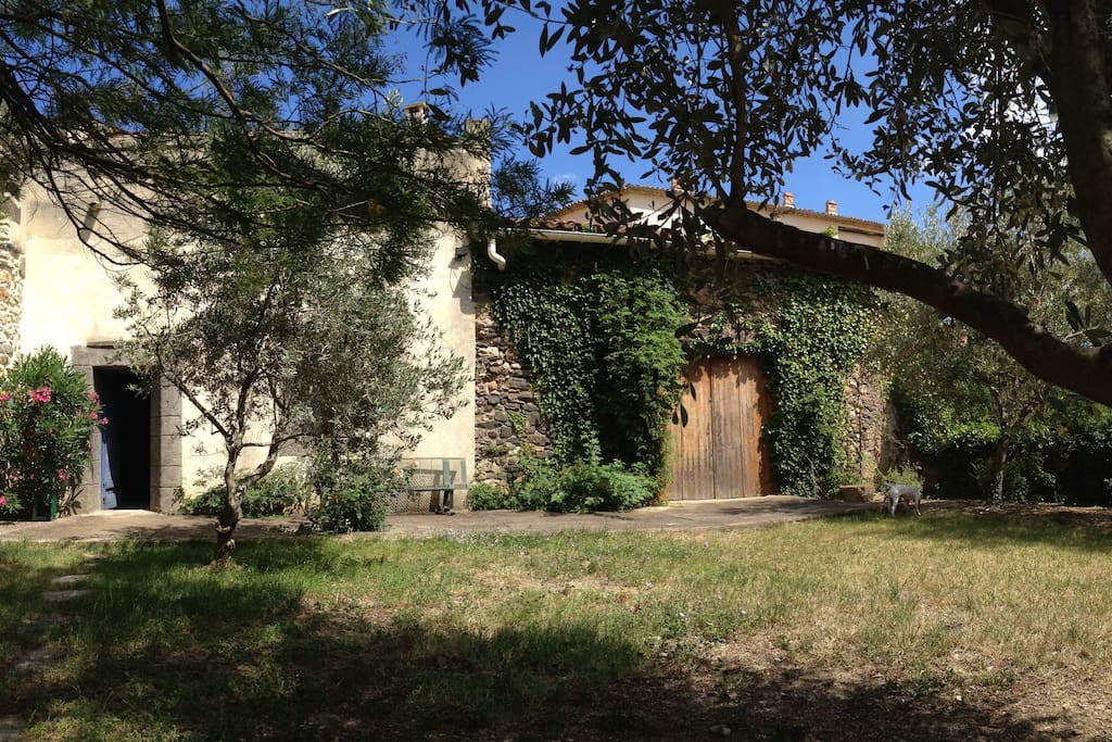 Arrière maison et jardin