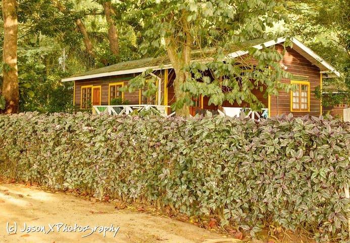 Man-O-War Bay Cottage #8 (2 Bedroom)