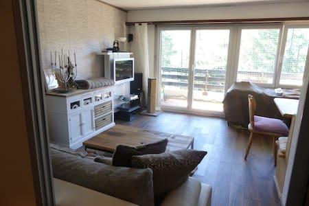 Studio in den Bergen - Bellwald - Lejlighed