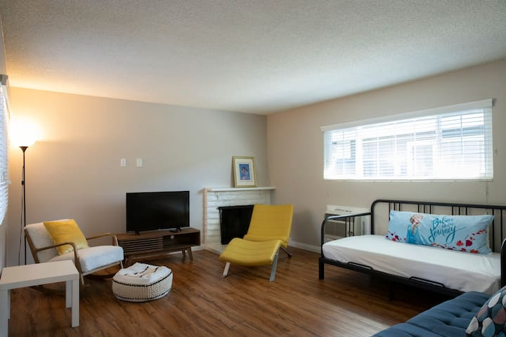 PROFESSIONALLY CLEANED 2BR/SMART TV/STAYCATION!