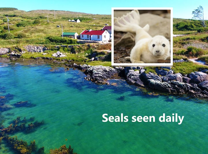 SEAL COTTAGE+ PRIVATE SANDY BEACH+WIFI