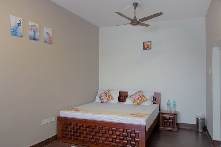 Luxurious A/C 300sqft suite with all amenities