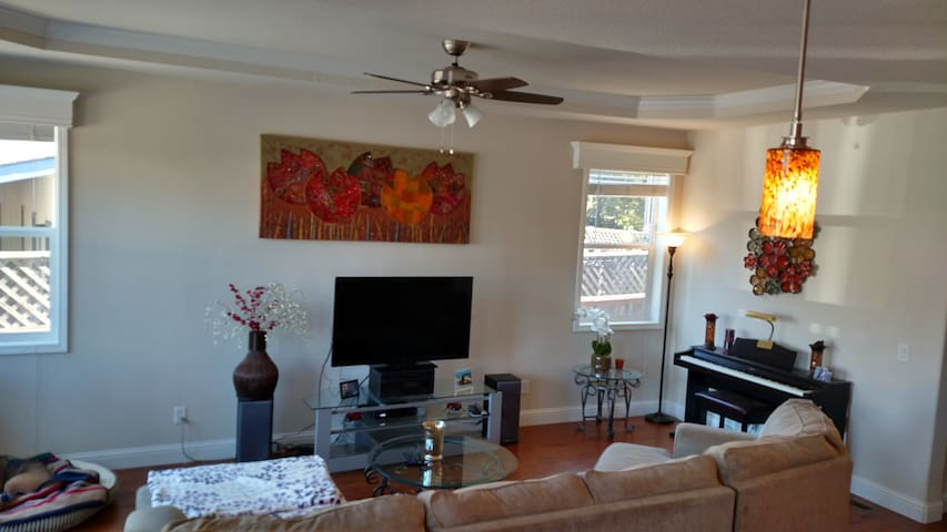 Living room, with flat screen TV (cable includes every possible movie channels).