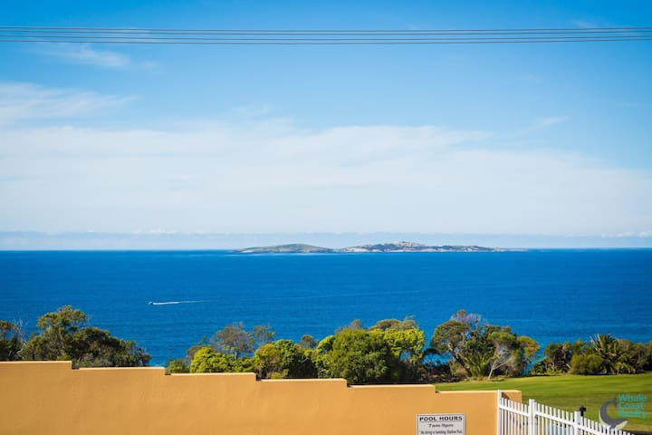 Countess Court Unit - Great Ocean Views