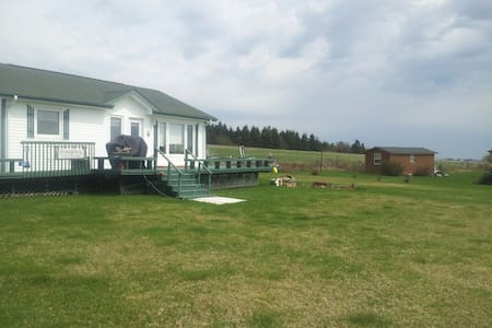 2 bed room cottage - North Rustico