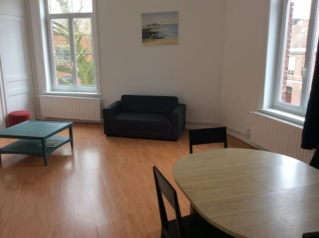 Spacious appartement near underground in Lille - Lille - Pis