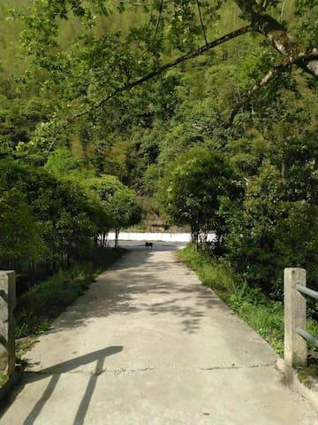 井冈山杜鹃山风景区农家