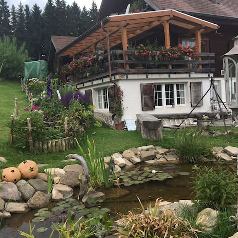 Apartment mitten in der Natur - Rüschegg Heubach - Appartement