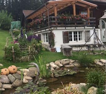 Apartment mitten in der Natur - Rüschegg Heubach