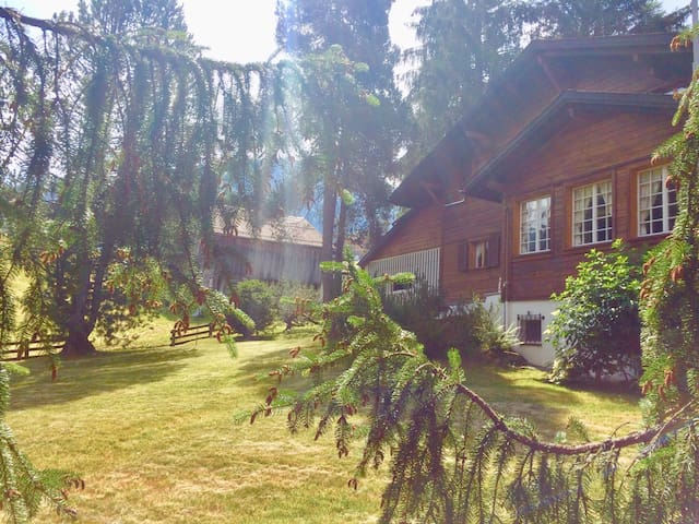 Single Bedroom, simple and cosy in Gstaad (B&B)